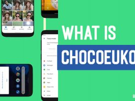What is ChocoEukor? Is ChocoEukor Safe To Remove?